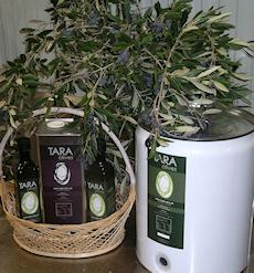 tara-olive-oil